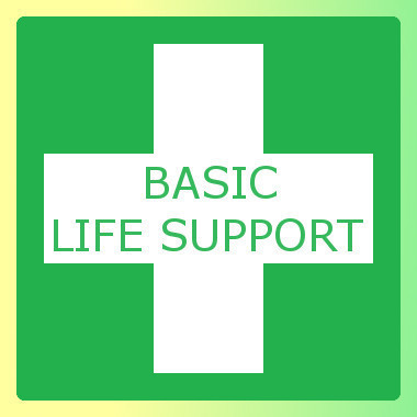 Basic Life Support of Adults and Children Training Course