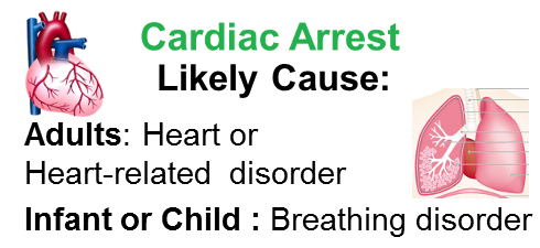 The difference in the likely cause of cardiac arrest between an adult and a child or infant