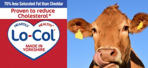 lo-col cheese